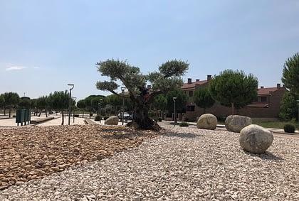 servicios jardineria Valladolid