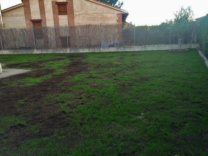 Jardín unifamiliar en Boecillo